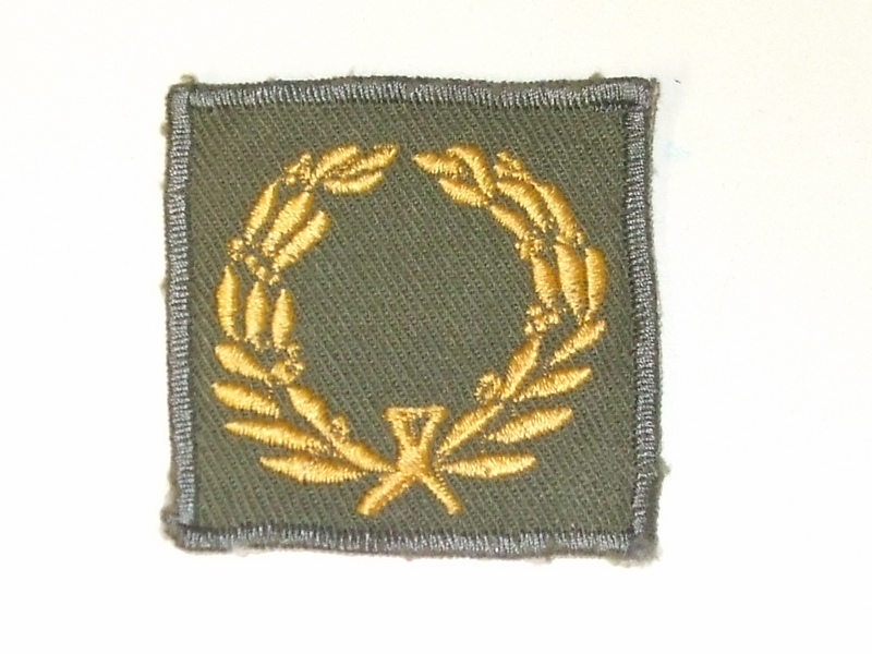 WWII Theater Made Army Meritorious Service Award