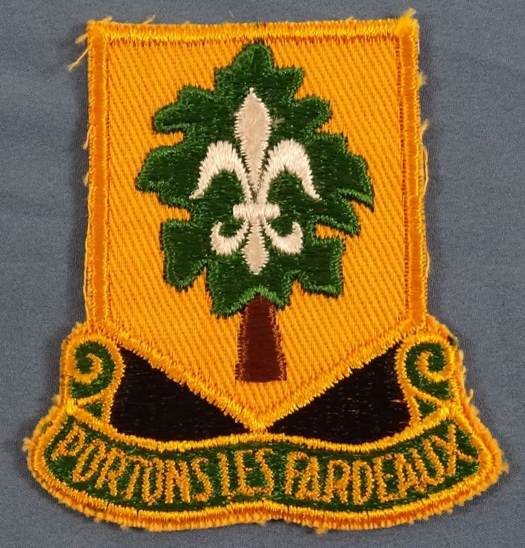 101st Support Battalion Patch